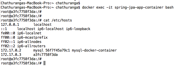 Docker: Spring Boot and Spring Data JPA (MySQL) REST Api